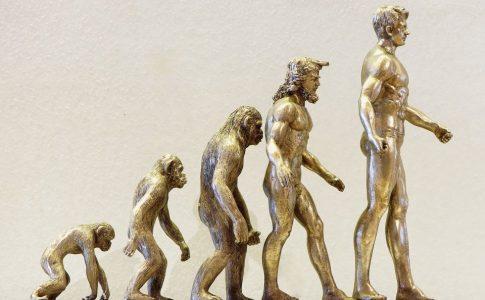 進化 アイキャッチ